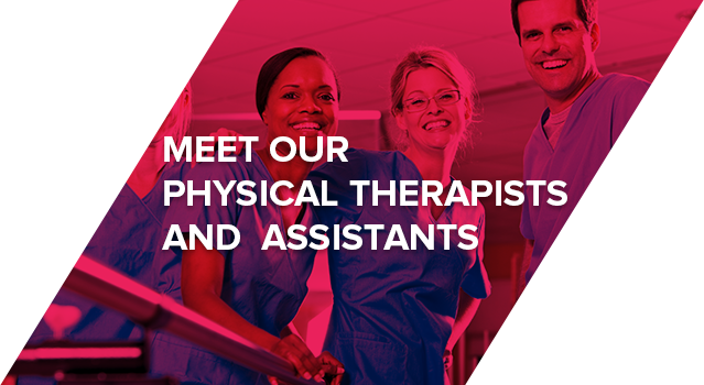 Meet Our Physical Therapists and Assistants